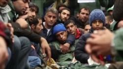 难民署吁欧洲合作协助难民 日本迅销公司捐资