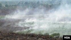 Pemerintah AS sepakat mengurangi utang Indonesia dalam suatu kesepakatan, yang bertujuan antara lain untuk mencegah penggundulan hutan.