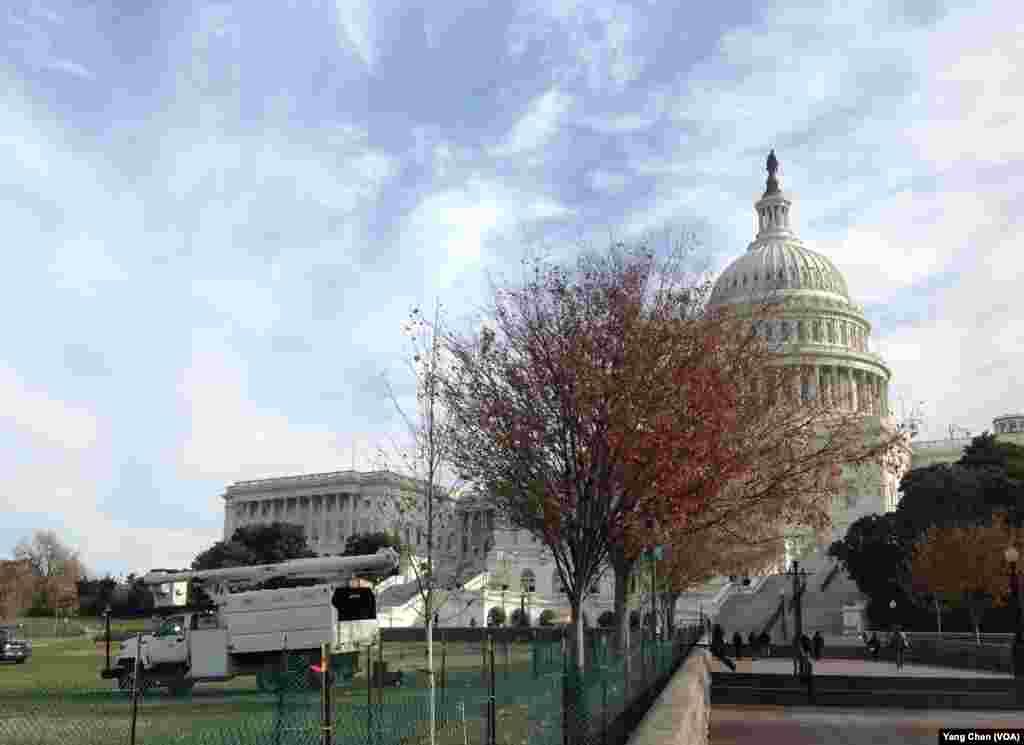 國會山準備迎接聖誕樹(美國之音楊晨拍攝)