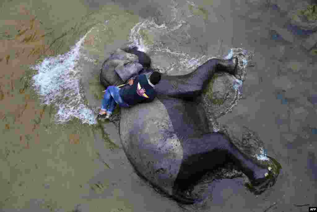 A mahout bathes a Sumatran elephant in a river at Trumon animal corridor in Leuser ecosystem area, Southern Aceh province, Indonesia.