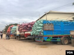 FILE: Trucks loaded with paddy rice parked outside rice mill in Pursat province, December 2019 (Sun Narin/VOA Khmer)