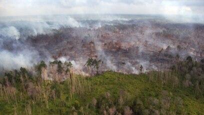 Penampakan dari udara kebakaran hutan yang terjadi di dekat desa Bokor, Kabupaten Kepulauan Meranti, Provinsi Riau, 15 Maret 2016. (Foto: Rony Muharrman/Antara Foto via REUTERS)