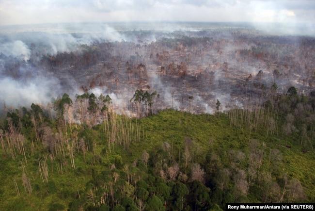 Tampak udara kebakaran hutan yang terjadi di dekat desa Bokor, Kabupaten Kepulauan Meranti, Provinsi Riau, 15 Maret 2016. (Foto: Rony Muharrman/Antara Foto via REUTERS)