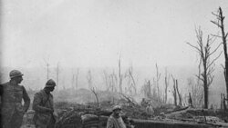 گزارش: نود و دومين سالروز پايان جنگ جهانی اول برگزار شد