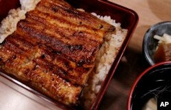 "Unajyu is served at Hashimoto, a Michelin one-star unagi restaurant in Tokyo, Aug. 2, 2017. Known as ""unajyu,"" the grilled ""kabayaki"" eel delicacy served on hot steaming rice in a neat lacquer box is what many Japanese people indulge in during the summer."