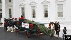 第一夫人米歇尔.奥巴马由女儿玛利亚和萨莎陪同迎来了白宫正式的圣诞树
