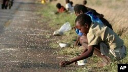 FILE - In this Dec. 14, 2008 file photo, children and their parents pick corn kernels spilled on the roadside by trucks ferrying corn imported from South Africa, in Masvingo 239 kilometers (148.5 miles) south of Harare.