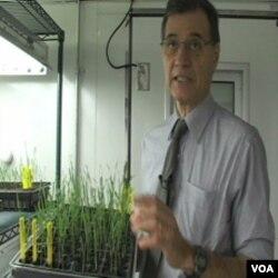 Jose Costa, naučnik na Univerzitetu Maryland