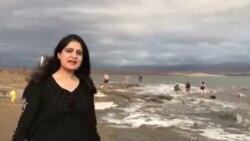 بحیرہ ِمردار میں ساحل کے کنارے