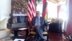 Ambassador Nichols: Zimbabwe Should Conduct Free, Fair And Credible Election