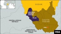 Eleven people were killed in a roadside attack on Sunday, Jan 25, 2015, in Western Bahr el Ghazal, South Sudan.