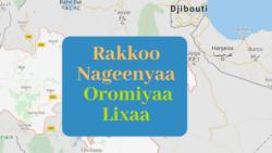 "Oromiyaa Lixaa Keessatti ""Gurmuu Hidhattoota Seeraa-alaa Deggertu,"" Maqaa Jedhuun Hidhaan Nutti Hammaate, Jedhu Jiraattota Keessaa"