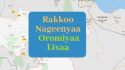 Namoonni Oromiyaa Lixaa Irraa Dheessanii fi Hayyoonni Rakkoon Naannoo Sanatti Akka Furmaatni Siyaasaa Kennamu Gaafatan