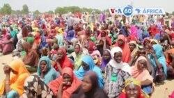 Les autorités de Kano ont décidé d'évacuer environ 250.000 enfants mendiants