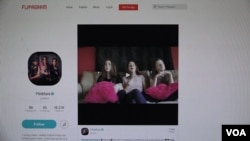Flipagram is an app for big name bands or up-and-coming musicians, such as the PinkFurs, are getting noticed by users. (Courtesy screengrab.)