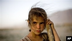 An Afghan girl.