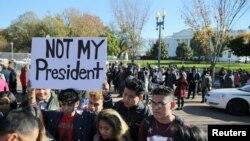 反对及拥护川普当选总统的示威(38图)