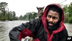 Роберт Сіммонс-молодший і його кошеня врятовані від затоплення. 14 вересня 2018 року, Нью-Берн, Північна Кароліна