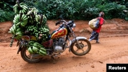 FILE - A motorbike taxi laden with locally-picked bananas is seen parked on the dirt track between the town of Mundemba and the village of Fabe, June 8, 2012.