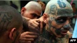 Yöneticilerin kabûsu cezaevlerindeki çeteler