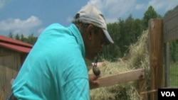 Farma koza kao povratak istinskim vrijednostima života