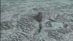 آب شدن يخ های قطبی باعث بالارفتن سطح درياها می شود