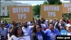 美國有30多萬人擁有臨時保護身份或TPS。特朗普政府正試圖取消該項目。民眾示威反對。