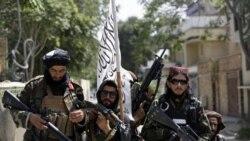 塔利班官方網站突然下線