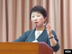 台湾执政党国民党立委卢秀燕 (美国之音张永泰 拍摄)