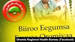 Mootummaan Naannoo Oromiyaa Tatamsa'ina Koronaa To'achuuf Wiirtuulee Fayyaa fi Hospitaalota Qopheessuu Beeksise