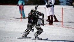Quiz - Olympic Ready? Robot Skiers Compete in South Korea