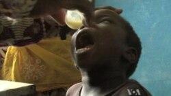 Malaria Programs at Risk From Funding Cuts