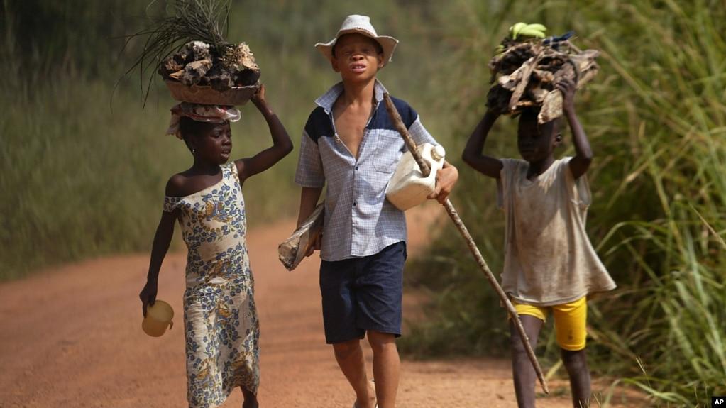 News dall\'Africa: Ghana e Costa d\'Avorio, cala il prezzo del cacao e ...