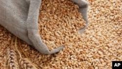 Αυξήθηκαν οι τιμές τροφίμων διεθνώς