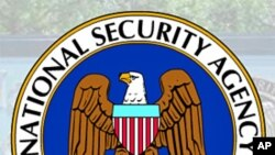 Former NSA Employee Pleads Guilty in Leak Case