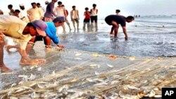 صنعتی اور غیر صنعتی فضلے سے آبی حیات خطرے میں