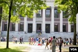 미국 하버드대학 도서관.