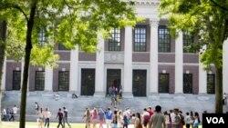 哈佛大學圖書館。