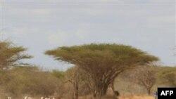 Біженці зі Сомалі прибувають в Кенію