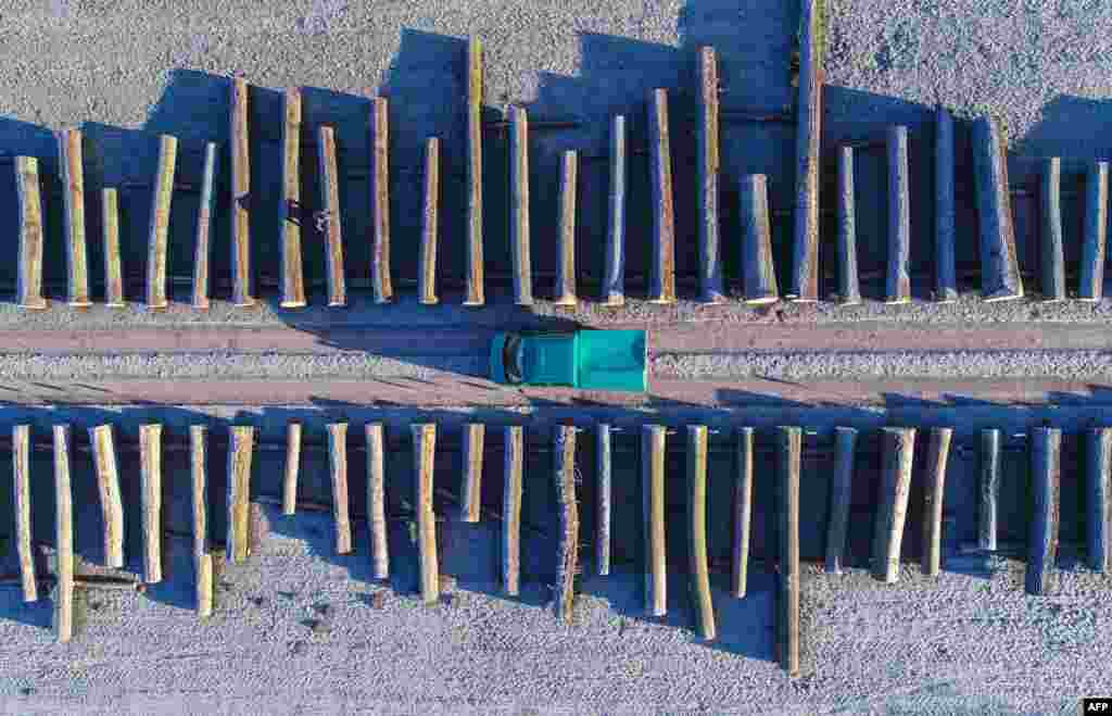 An aerial picture taken with a drone shows wood logs lined up at a storage facilities of a Brandebourg's forestry company in the eastern German town of Chorin.