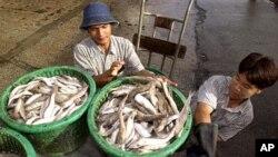 Các di dân Ðông Nam Á khác phụ giúp trên các tàu đánh cá, một công việc mà nhiều người Ðài Loan coi là nguy hiểm.