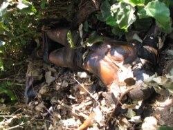Novas denúncias de corpos abandonados no centro de Moçambique - 3:03