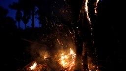 Nhóm G7 'gần đạt thỏa thuận' giúp dập các đám cháy ở rừng Amazon