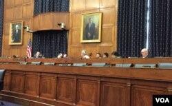 美众议院11号听证讨论亚洲民主发展 (美国之音杨晨拍摄)