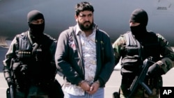 "FILE - Mexican federal police officers escort Alfredo Beltran Leyva, known as ""El Mochomo"", after his arrest upon his arrival to Mexico City's airport, Jan. 21, 2008."