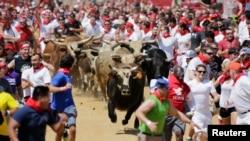 """Suasana festival """"Great Bull Run"""" di kota Petersburg, Virginia (24/8). Festival yang pertama kalinya diadakan di Amerika ini diselenggarakan dengan jarak sekitar 402,3 meter, lebih pendek dari perayaan historik yang biasa digelar di Pamplona, Spanyol."""
