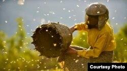 «Страна меда». Кадр из фильма. Courtesy photo