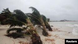 Bão Bolaven dự kiến sẽ mang mưa to và gió lớn tới các hòn đảo ở tỉnh Okinawa vào ngày mai.
