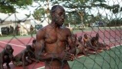 Amnistiados começam a ser libertados em Angola - 1:26