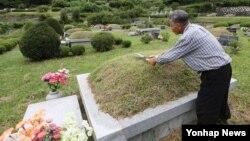 6일 추석을 앞두고 경기도 남양주시 화도읍 월산리 모란공원을 찾은 성묘객이 조상의 산소를 찾아 벌초를 하고 있다.